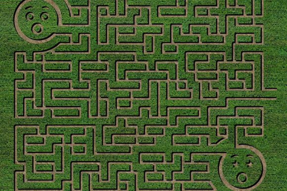 Best California Corn Maze